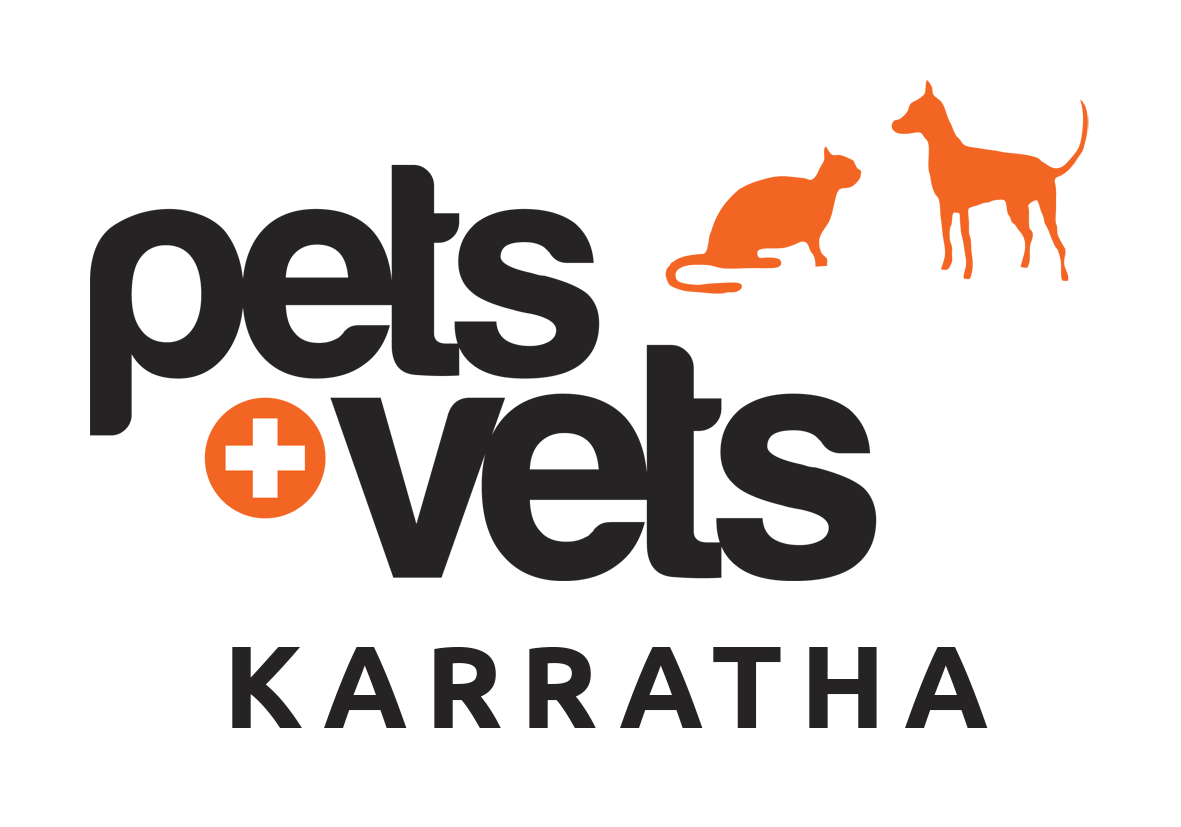 Karratha Veterinary Hospital